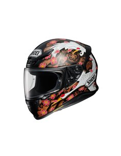 Casco Integral Shoei NXR Transcend TC10