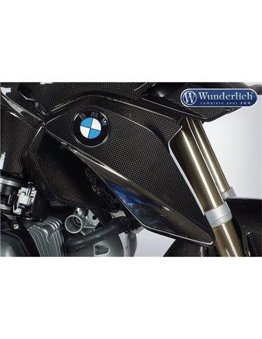 Cubierta Carbono radiador en (con porta-emblema) para BMW R 1200 GS LC (2013 - 2016)
