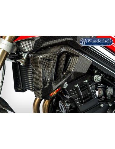 Carenado Carbono para el radiador de agua de la  BMW F 800 R (2015 - )